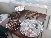 豪華BBQ海鮮盛り