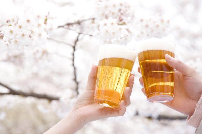 桜の木バックで乾杯