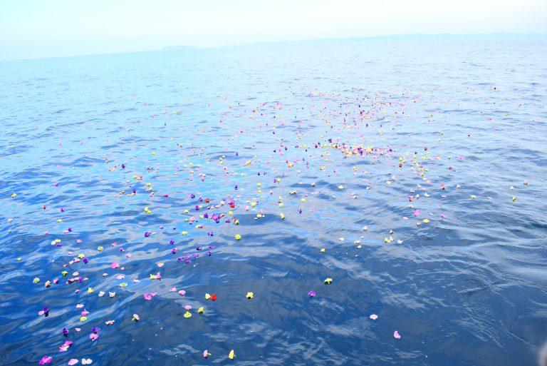 海洋散骨で海に浮かぶ花びら