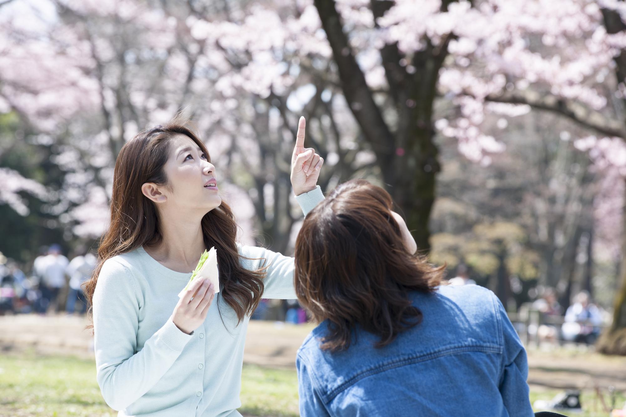桜を見ながら食事をする女性