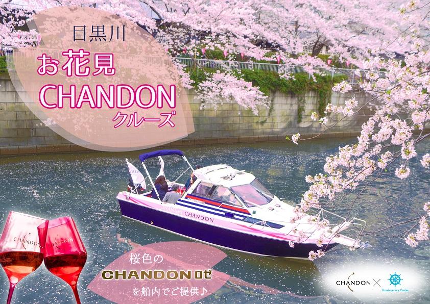 桜が満開の目黒川に浮かぶアニー号